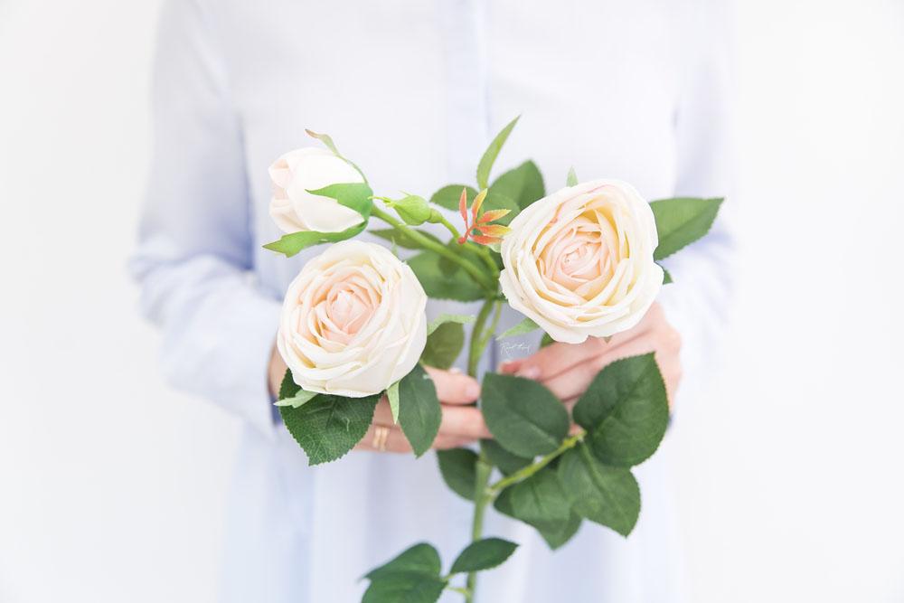 Seidenblume Peony Rose in der Farbe beige mit rosa Kanten