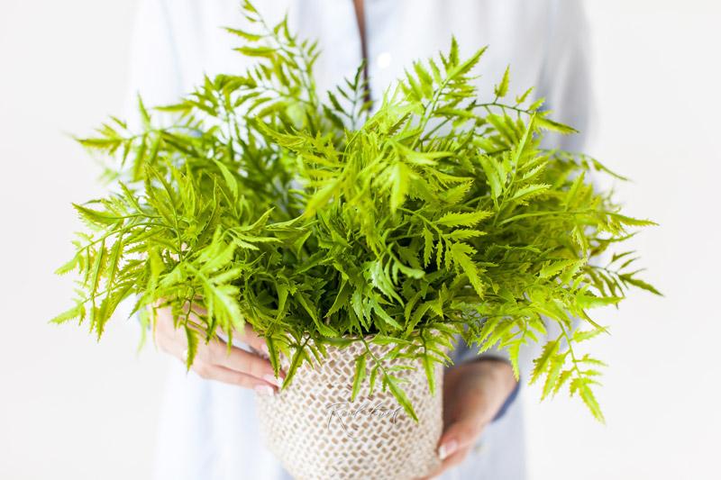 Kunstpflanzen von Realtouch-Blumen