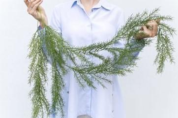 Asparagus Green (ID 136) Image