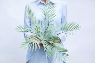 Bamboo Palm Tree Dusty Green (ID 1393) Image